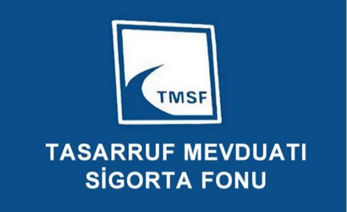 TMSF'deki 933 firmanın değeri ne oldu?