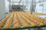 Üretim verilerini ERP ile entegre edecek