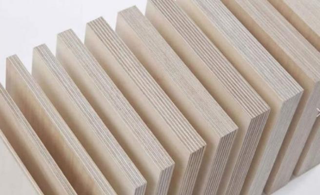 Plywood ürünleri ile lojistik sektörüne kalite kazandırıyor