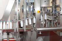 Devlet destekli kooperatiften senelik 600 ton süt üretimi