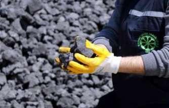 Kok kömüründe büyük işbirliği