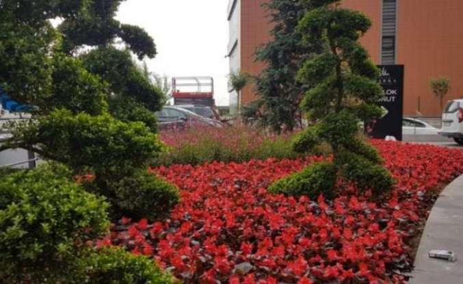 Marmara Fidancılık Sakarya Peyzaj ve Süs Bitkiciliği Festivali'ne katıldı