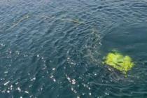 Denizin altındaki elektrik arızalarına milli robotla müdahale