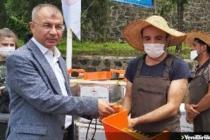 Artvin'de çay hasadına yerli iş gücü desteği