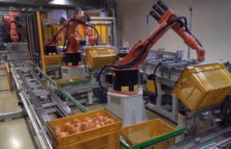 Sunduğu çözümle 7.500 ekmek el değmeden sevkiyata hazırlanıyor