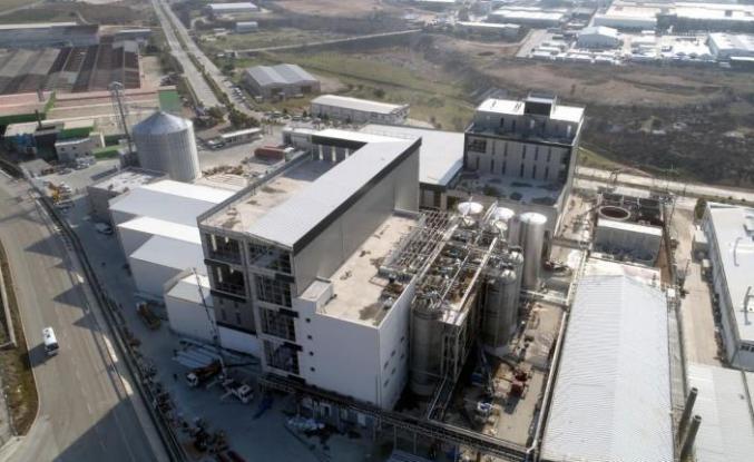 Adana'ya sitrik asit üretim tesisi