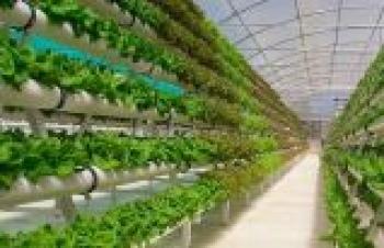 Hedef: sürdürülebilir yüksek tarım ilkeleri