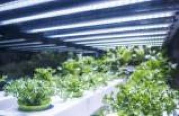 Enerji tasarruflu endüstriyel LED aydınlatma sistemleri