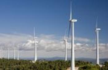 Özgül Kamelya'dan Ordu'ya 40 MWe kapasiteli RES projesi geliyor