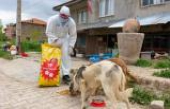 Türkiye Petrolleri'nden sokak hayvanlarına mama desteği