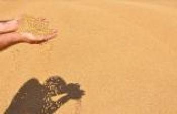 GAİB BAKLİYAT İHRACATINDA İLK SIRADA